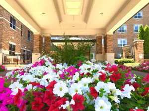 Summertime Beauty and Nature at Regency